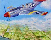 Tuskeege-Airman