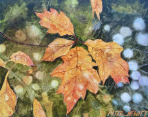 1_fall_leaves