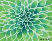 1_green_dahlia