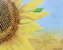 1_large_sunflower